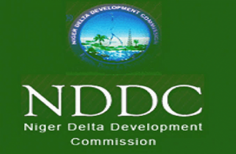 N11.5bn School Chairs Contracts Smuggled Into NDDC Budget