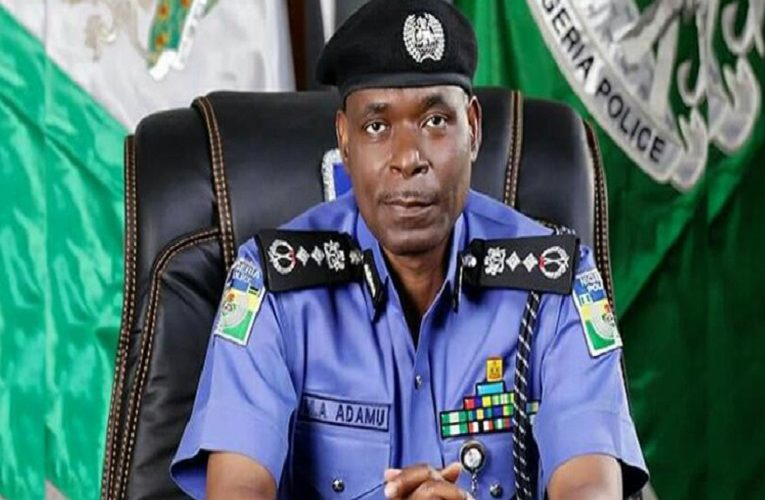 'We'll never allow another violent #EndSARS protest again'- IGP Adamu Mohammed says