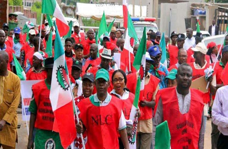 NLC Asks Members To Protest At NASS, State Assemblies Over Minimum Wage