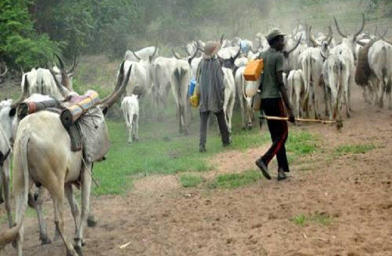 Herdsman arrested for attacking farmer with machete in Kwara