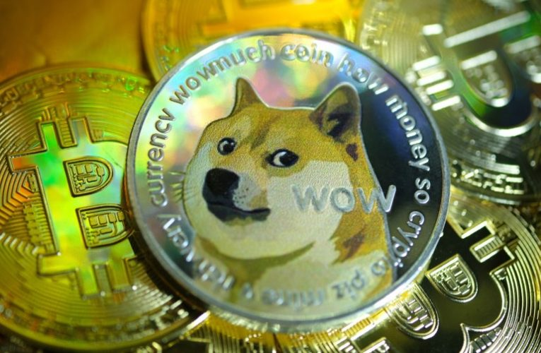 Dogecoin up slightly after losing most of 20% morning surge